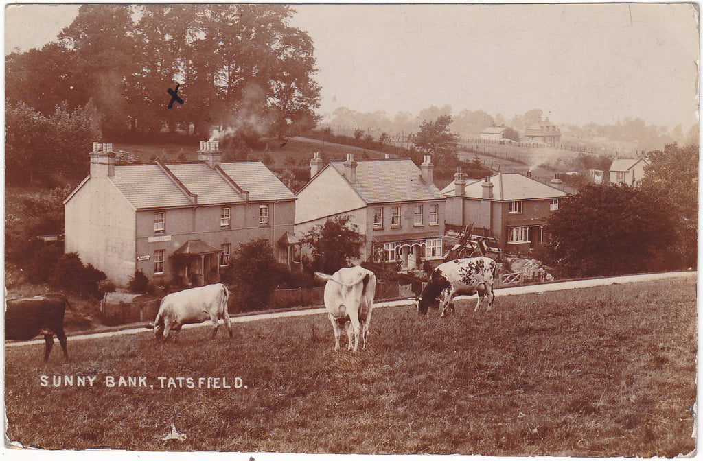 1907 real photo postcard of Sunny Bank, Tatsfield, in Surrey
