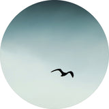 Seagul blue | CIRCLE ART
