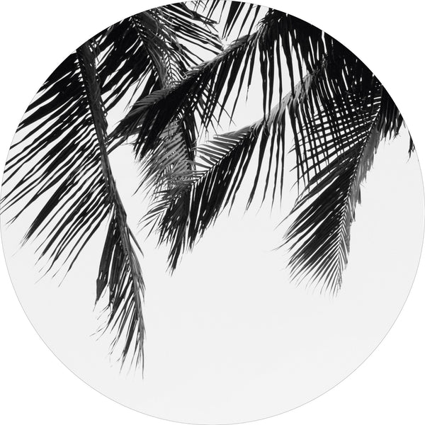 The Palms | CIRCLE ART