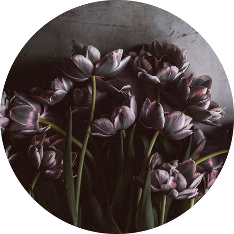 Dark tulips | CIRCLE ART | RUNDE BILLEDER