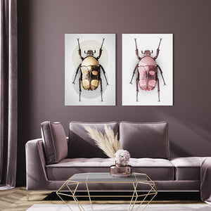 Beetle Pink | Canvas Board