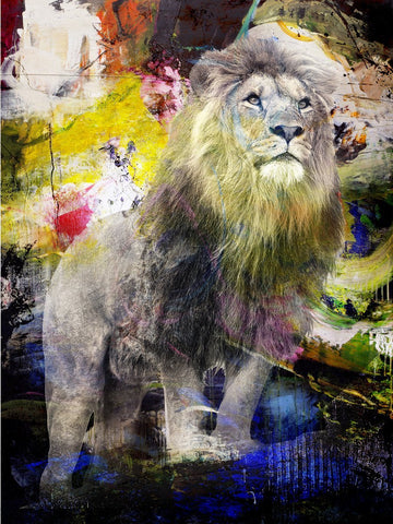 Colour Lion / UDSOLGT