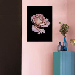 Pink  Rose | POSTER BOARD