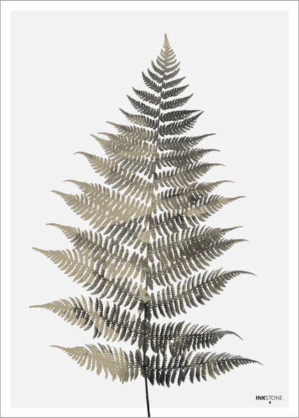 Fern One | PLAKAT