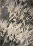 Mellow Grasses 4 | POSTER BOARD