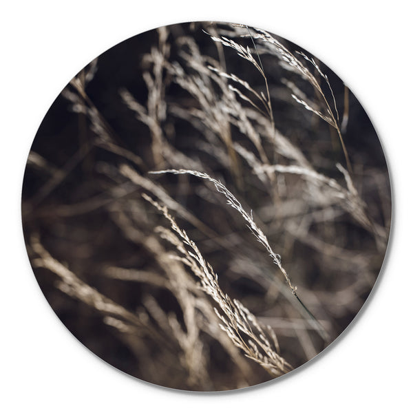 Mellow Grasses 7 | CIRCLE ART