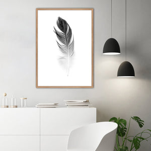 Soft Feather | PLAKAT