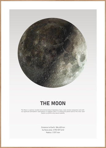 The Moon Light | POSTER BOARD