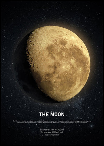 The Moon | POSTER BOARD
