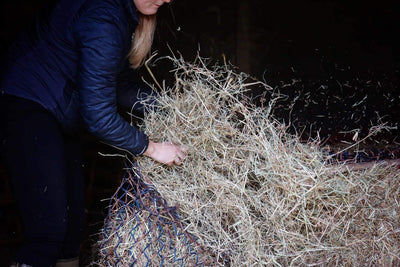 It's not just horses at risk from hay…what about your lungs?!