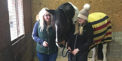 UK Testimonial:  ComfortStall flooring and Haygain steamed hay, the perfect combination for happy horses.