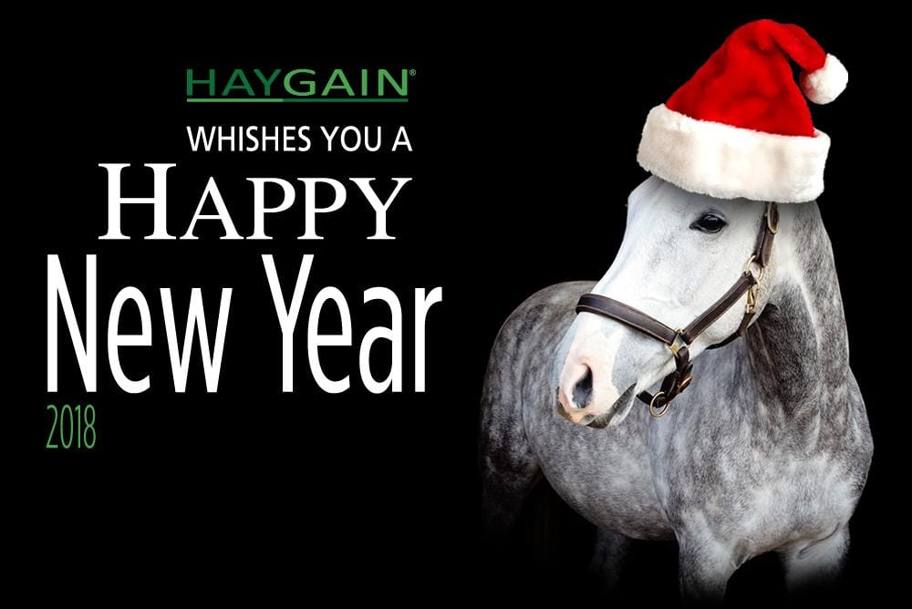 New Year's resolutions for the horse owner
