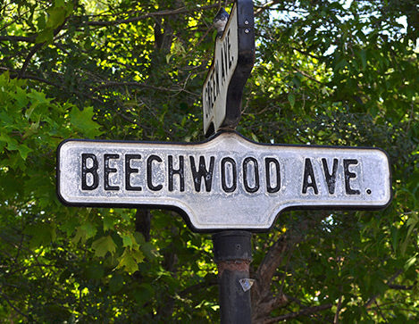 Beechwood Business - The Magic Pill?