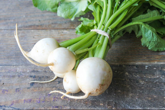 Sugar Drop Radishes - Organic