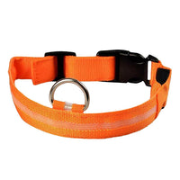 Collier LED DEL pour chien chat animaux orange