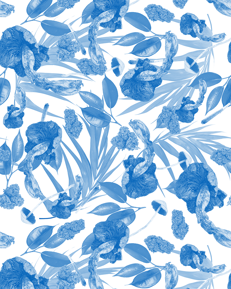 Natural Remedies - Wallpaper - Blue / White
