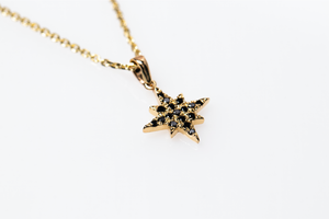 estrea necklace - 14k & black diamonds