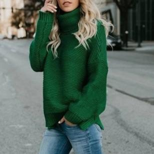 Knit Turtleneck Pullover Sweater