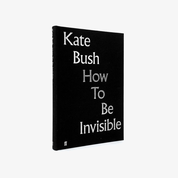 Kate Bush: How to be Invisible