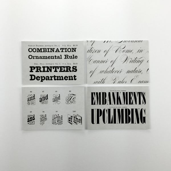 A Selection of Fifty Type Specimens