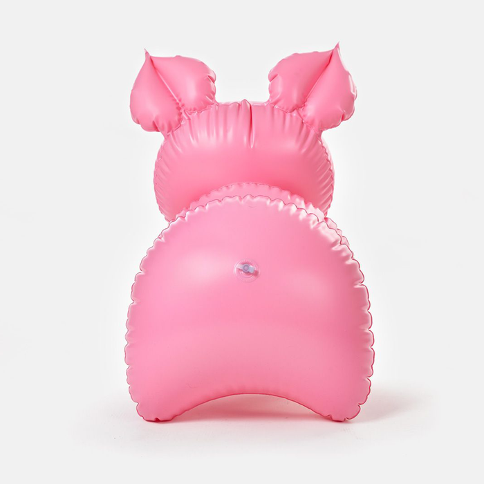 Piggy Inflatable Toy