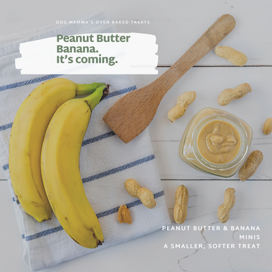 Peanut Butter Banana small treats are coming soon!