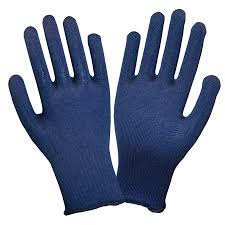 Blue Thermastat Gloves