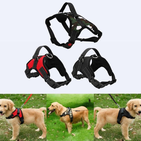 Adjustable Pet Harness