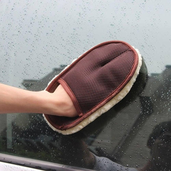 Car Cleaning Mitten/Glove