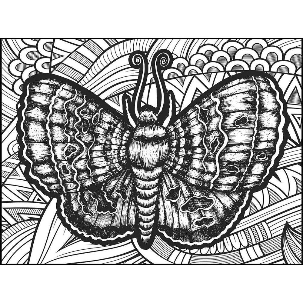 Butterfly 300 Coloring, Jigsaw Puzzle by Lafayette