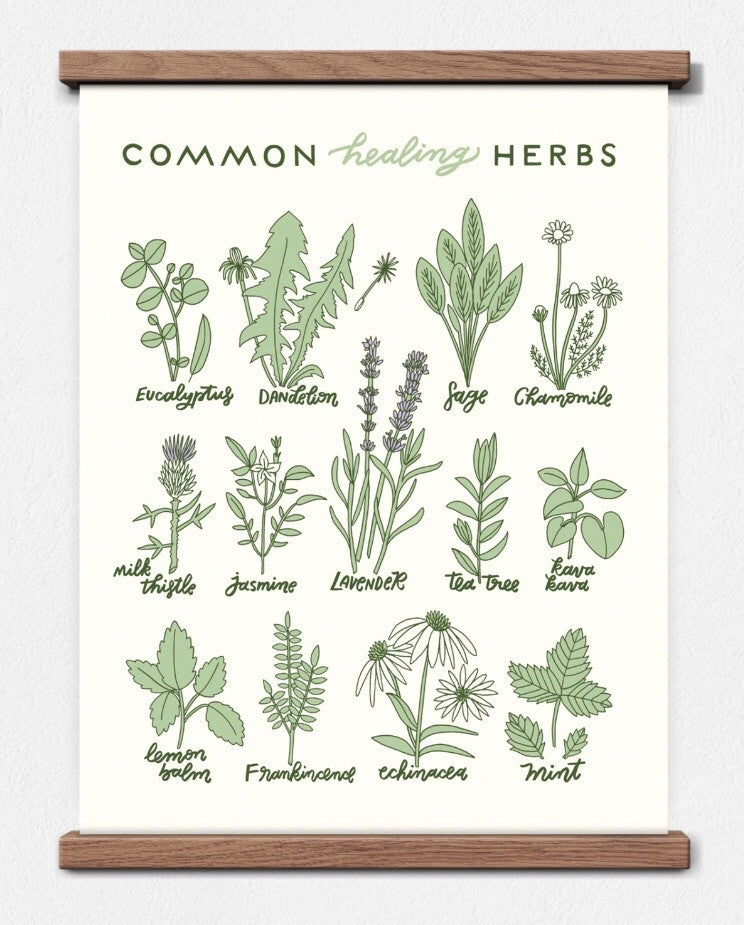 healing herbs screen print