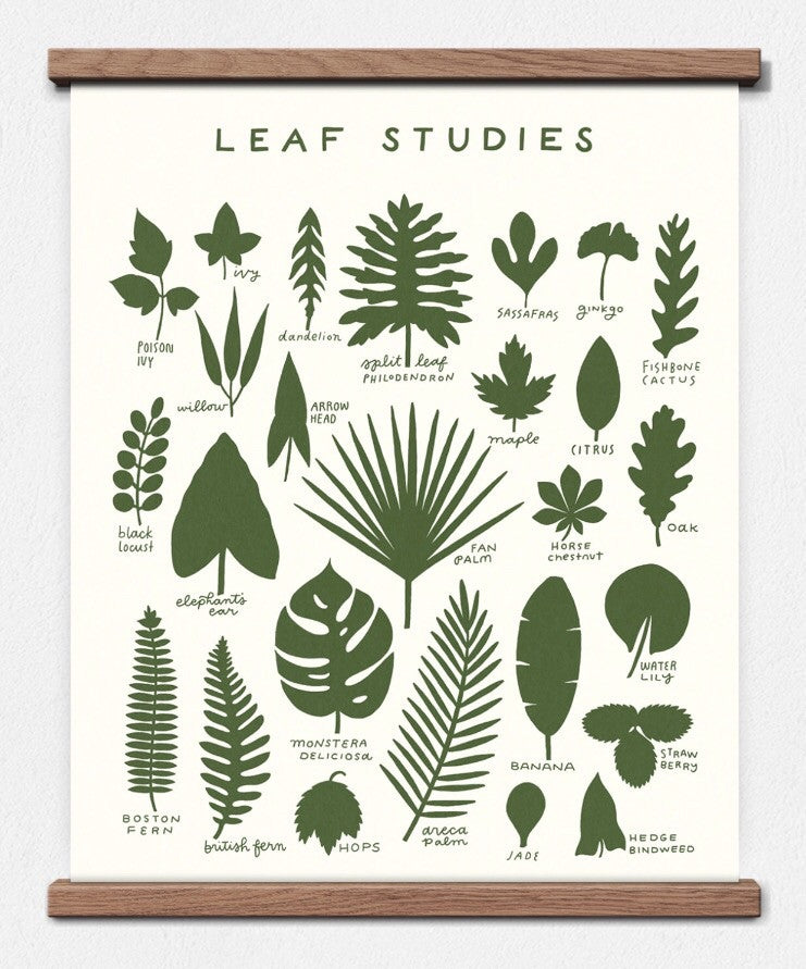 leaf studies screen print