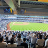 Playoff Tickets: Yankees vs. Astros,  ALCS Game #4