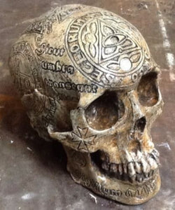 Memento Mori Knight Templar Carved Replica Skull