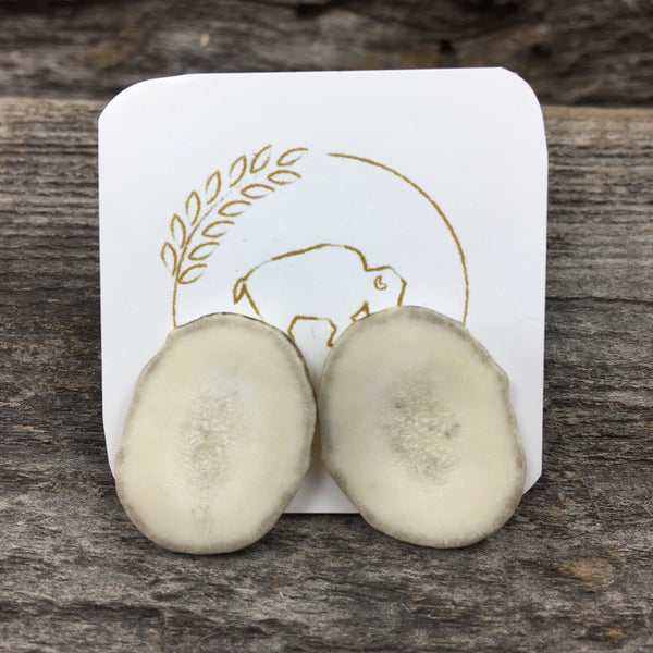 Antler Stud Earrings