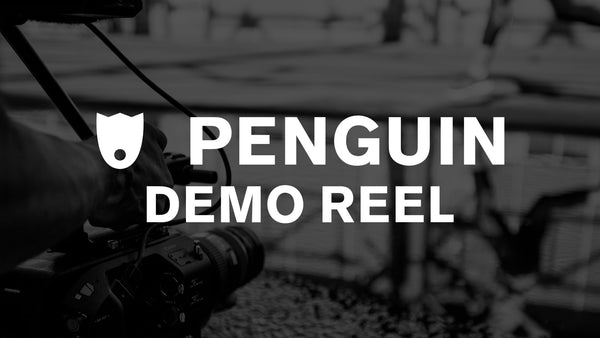 PENGUIN - WHO WE ARE - DEMOREEL
