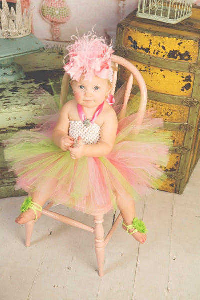 Birthday Photo Tutu Dress Green and Pink