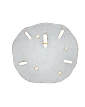 Stardust White Large Goldtone Sand Dollar Pin