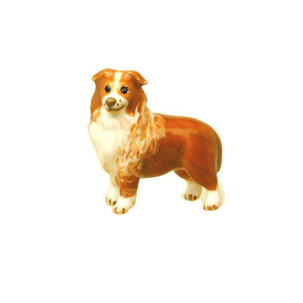 Brown Border Collie Adorable Pooch ® Pin
