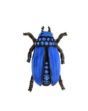 Garden Blue Beetle Pin