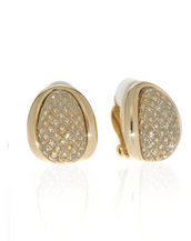 Stardust Gold Sharkskin Earrings
