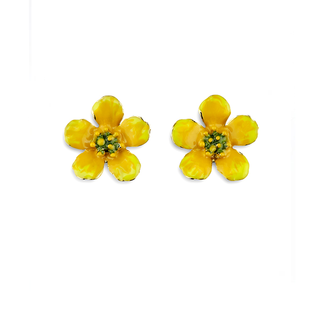 Buttercup Pierced Earrings