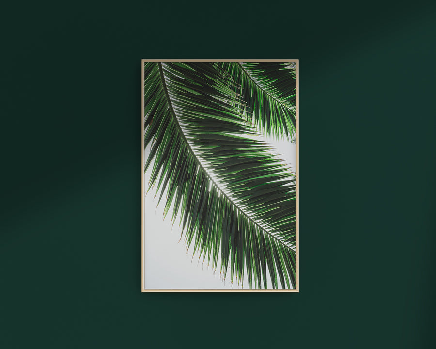 Palm Leaf - THE PRINTABLE CONCEPT - Printable art posterDigital Download -