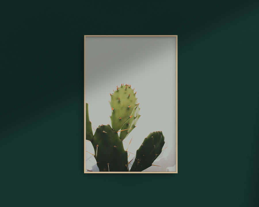 Prickly Pear 2 - THE PRINTABLE CONCEPT - Printable art posterDigital Download -