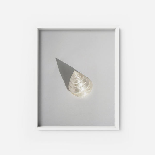 California Cone - THE PRINTABLE CONCEPT - Printable art posterDigital Download -