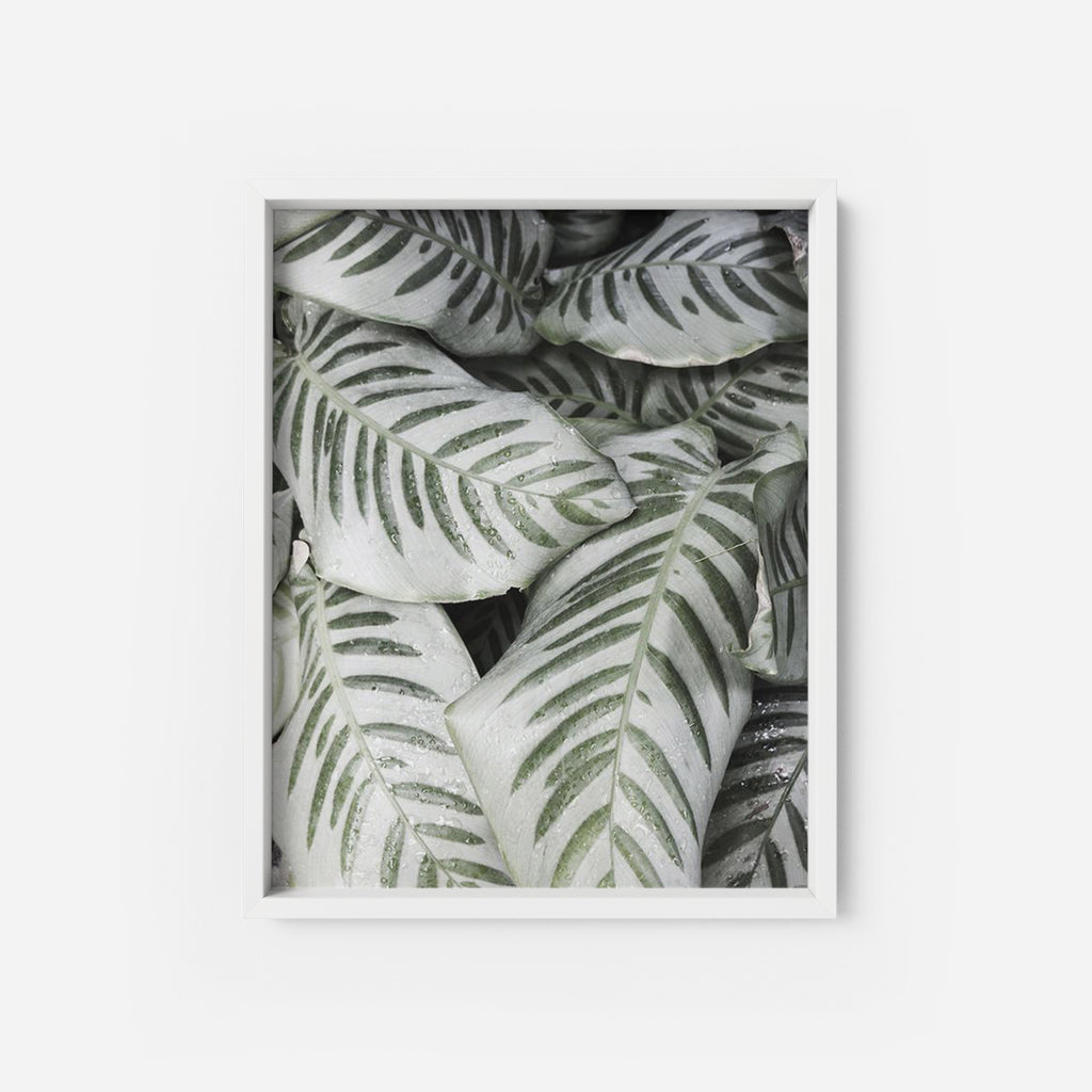 Foliage - THE PRINTABLE CONCEPT - Printable art posterDigital Download -