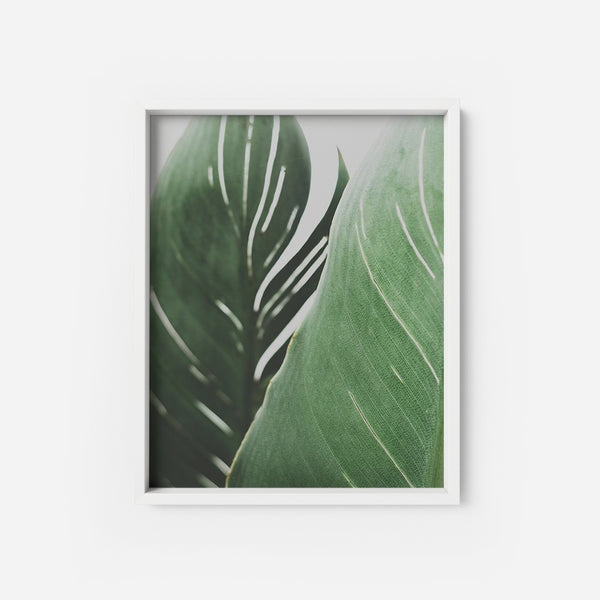 Leafy Green - THE PRINTABLE CONCEPT - Printable art posterDigital Download -