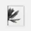 Palm Tree 1 - THE PRINTABLE CONCEPT - Printable art posterDigital Download -