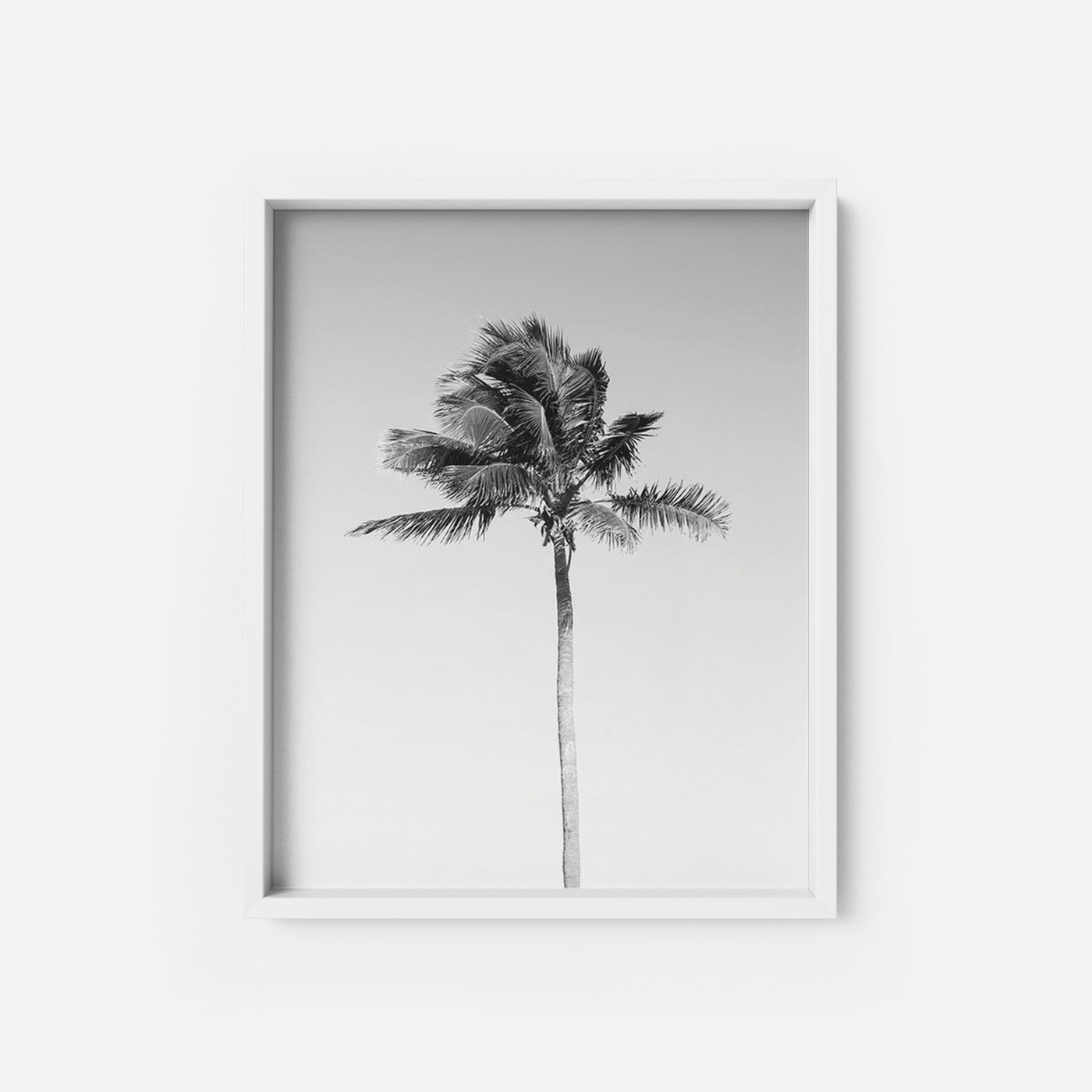 photo about Palm Tree Printable identify Palm Tree 3