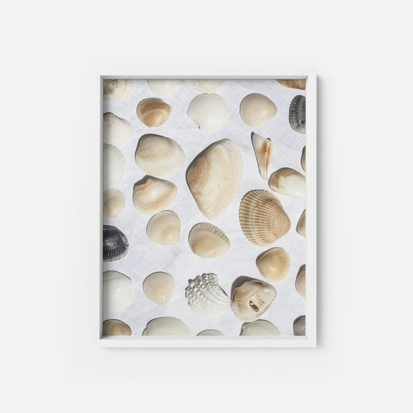 Seashells - THE PRINTABLE CONCEPT - Printable art posterDigital Download -